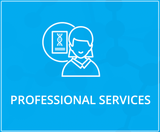 Profession Services