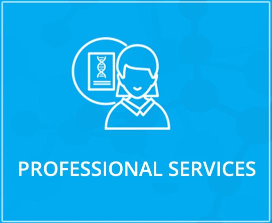 Profession Services