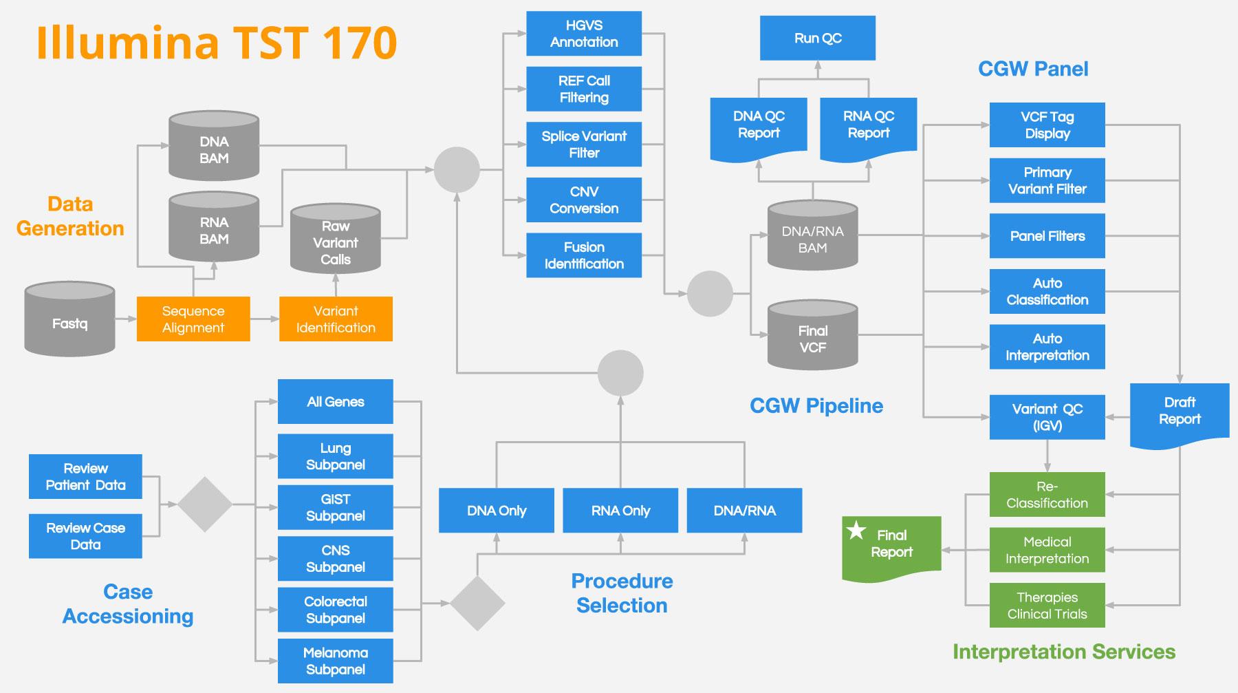Illumina TruSight Tumor 170 Example Workflow