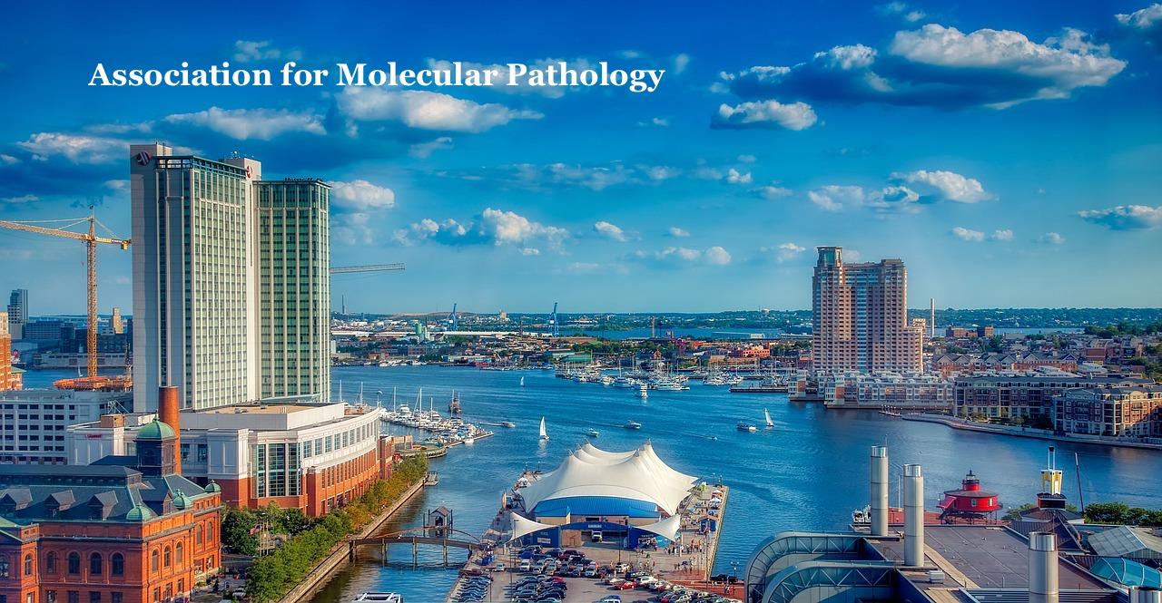 Baltimore -- image 1778011 from Pixabay